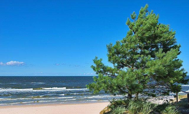 море в Польше